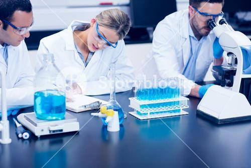 Science students working together in the lab