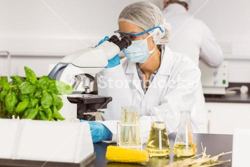 Food scientist using the microscope