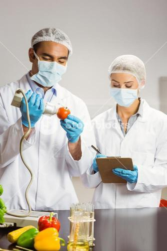 Food scientist using device on tomato