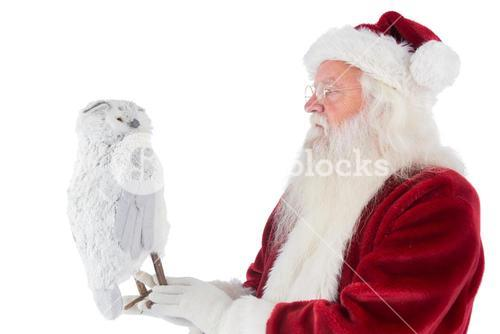 Father Christmas holds an owl