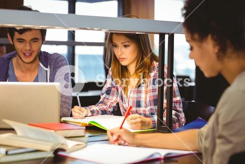 Serious young classmates working together