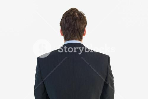 Rear view of businessman standing