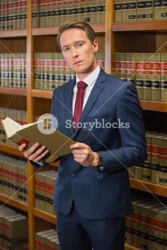 Handsome lawyer in the law library