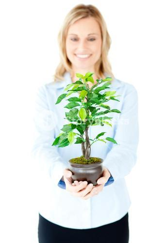 Portrait of a delighted businesswoman showing a plant to the camera