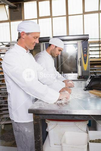 Focused bakers kneading dough at counter
