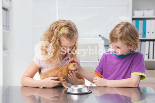 Happy owners petting their cat eating