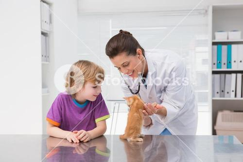 Veterinarian examining a cat with its owner