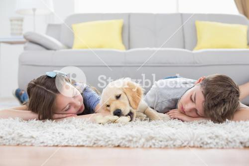 Siblings sleeping with dog on rug