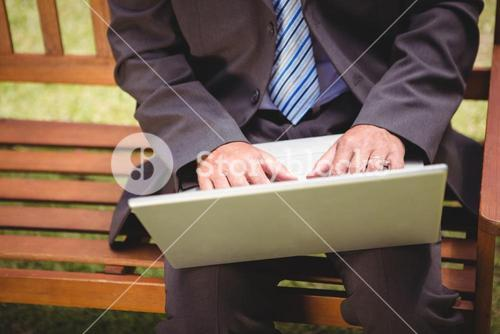 Businessman using laptop in the park