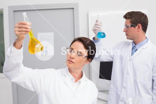 Scientists looking attentively at beakers