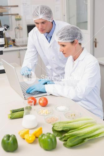 Scientists working with laptop and vegetables around them