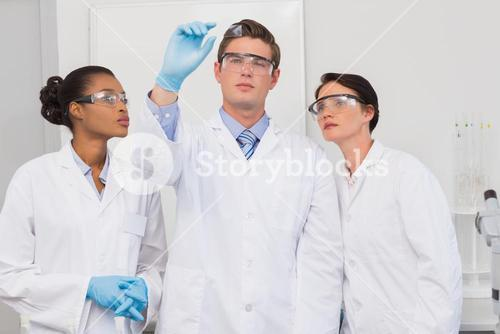 Scientists looking at experimentation