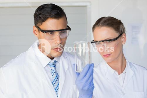 Concentrated scientists looking at beaker