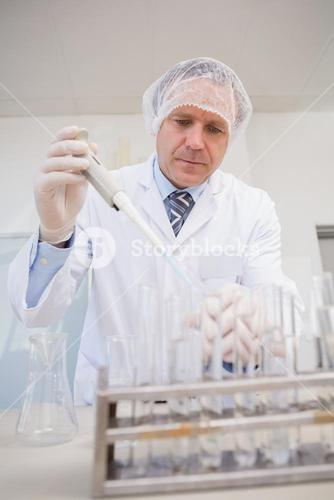 Scientist doing experimentations in petri dish