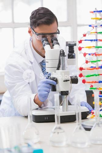 Scientist analysing petri dish with the microscope