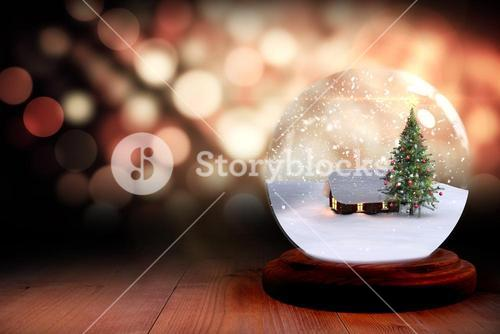 Christmas tree and house in snow globe