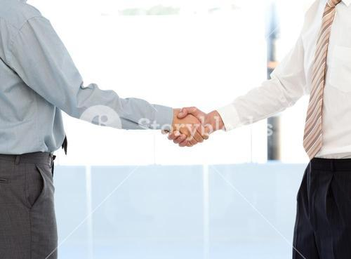 Close up of two businessmen concluding a deal by shaking their hands