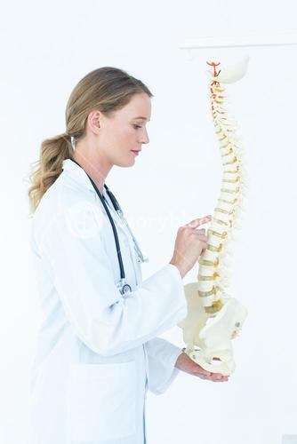 Female doctor with anatomical spine