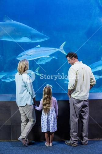 Happy family looking at the fish tank