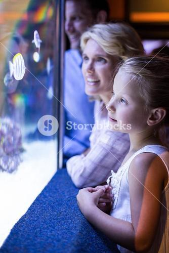 Happy family looking at starfish in a tank