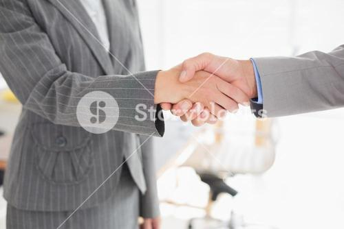 Businesswoman shaking hands with a businessman