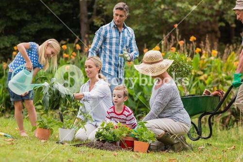 Happy family gardening