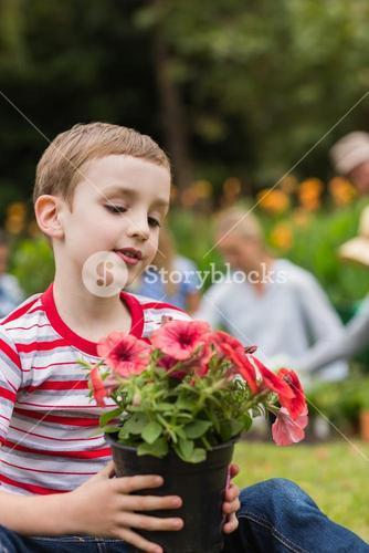 Young boy sitting with flower pot