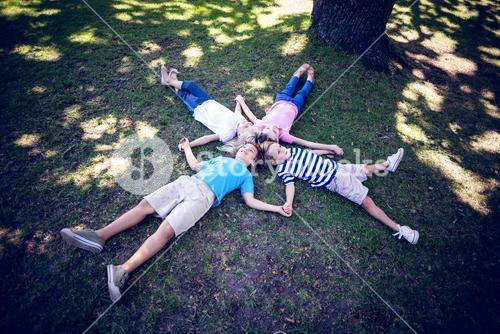 Happy familly lying down in the park
