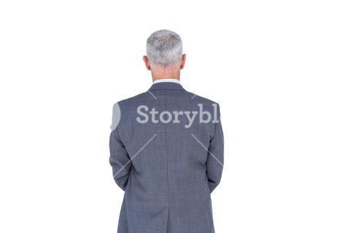 Wear view of businessman with grey hair