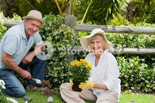 Mature couple working in the garden