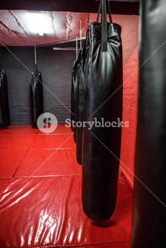 Punching bags in red boxing area