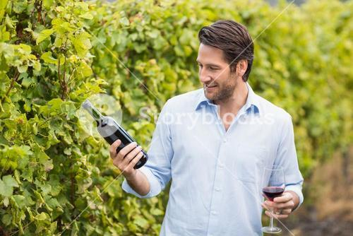 Young happy man looking at wine bottle