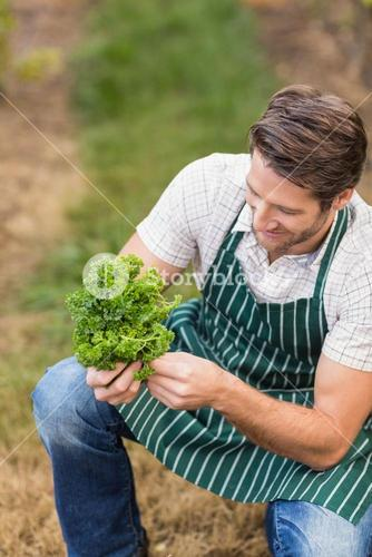 Young happy farmer looking at vegetable