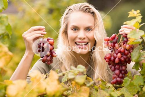 Smiling blonde winegrower holding red grapes