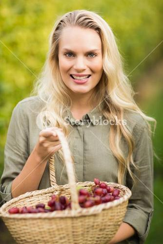 Blonde winegrower holding a red grape basket