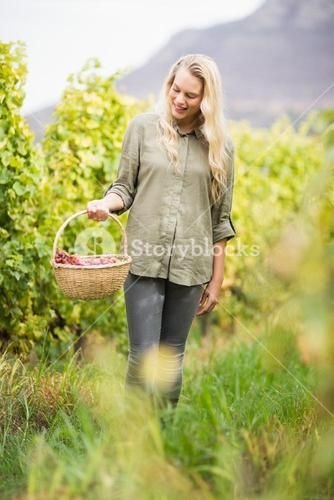Blonde winegrower walking with her red grapes basket
