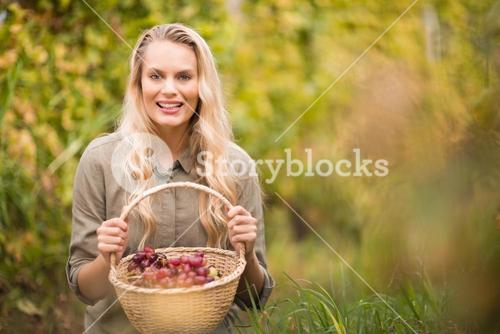 Blonde winegrower holding a red grapes basket