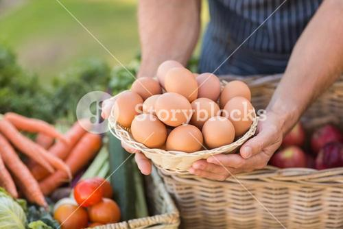 Farmer hands holding a basket of eggs