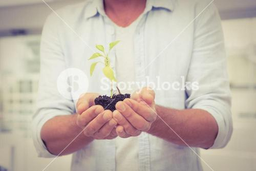 Casual businessman holding plant