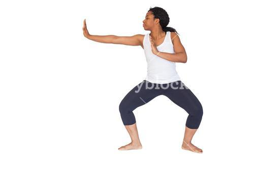 Fit woman doing martial arts