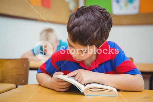 Pupil reading a school book