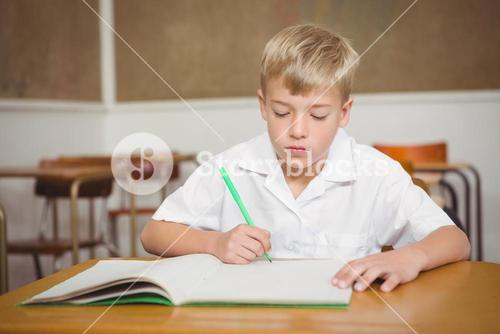 Busy student working on class work