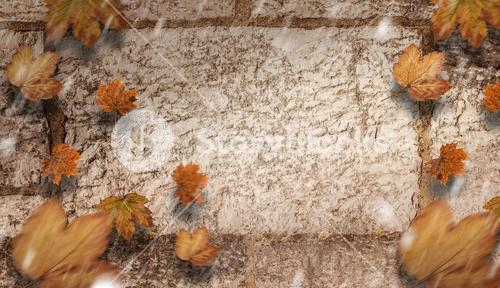 Composite image of autumn leaves pattern