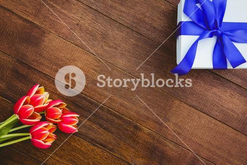 View of red flowers and blue gifts