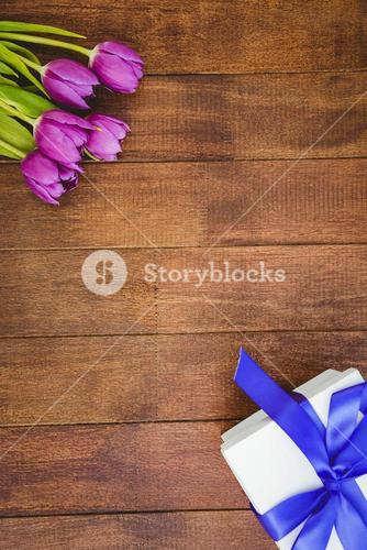 View of purple flowers and blue gifts