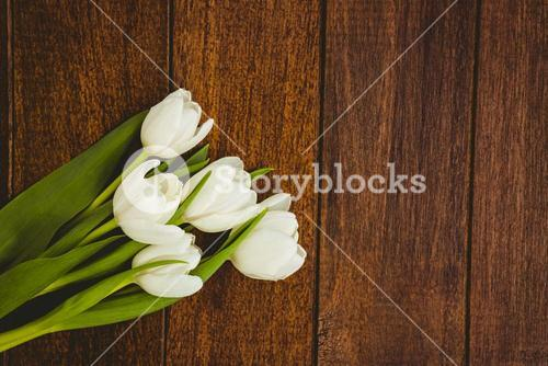 View of a bouquet of white flower