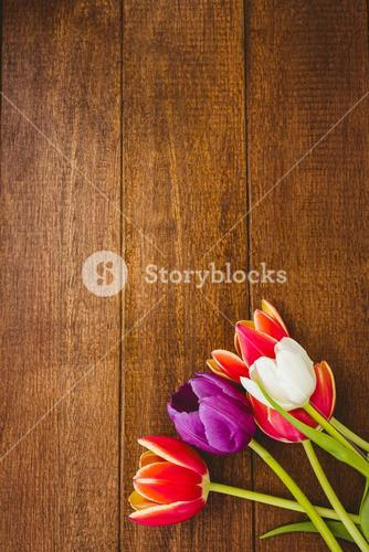 View of a colored bouquet of flowers