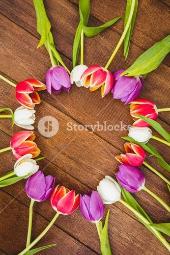 Circle of purple and red flowers