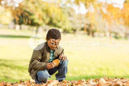 Little boy picking up some leaves