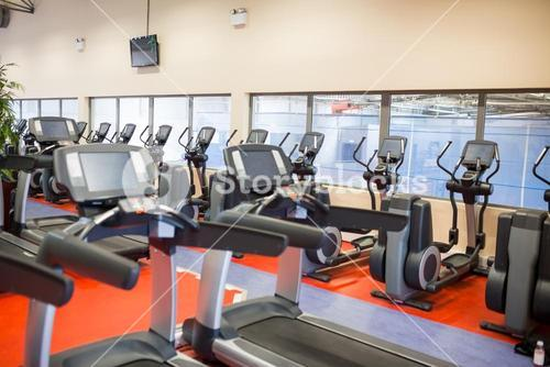 Row of treadmills and exercise bikes